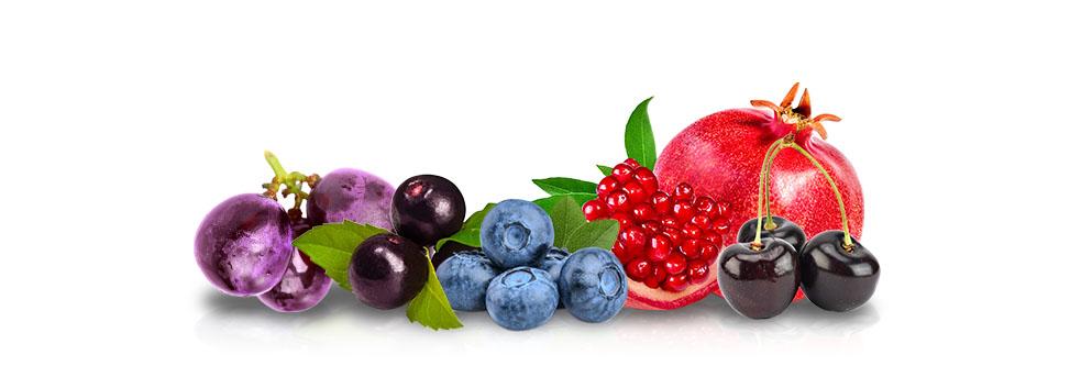 alfa RXP - fruits