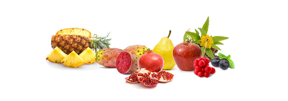 alfa YAKUNAAH - fruits